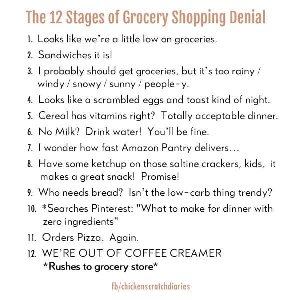 12 Stages of Grocery shopping denial