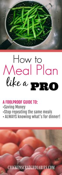 Completely Basic Guide to Creating a Meal Plan on a Budget