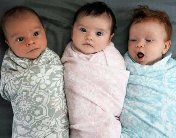 Bambinoland Babies