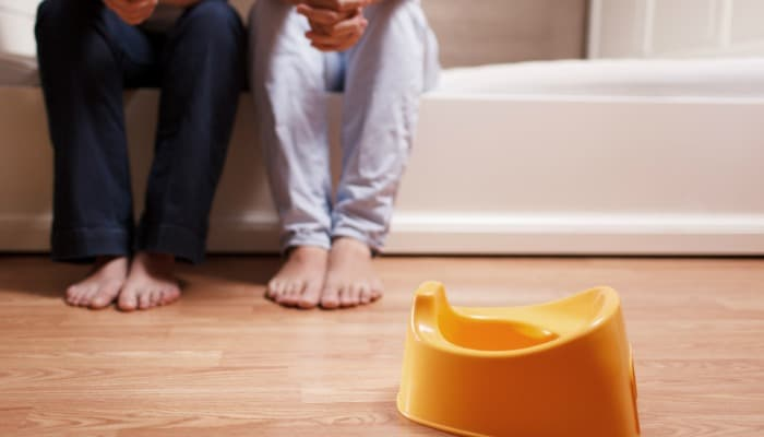 Potty training a stubborn toddler - potty seat
