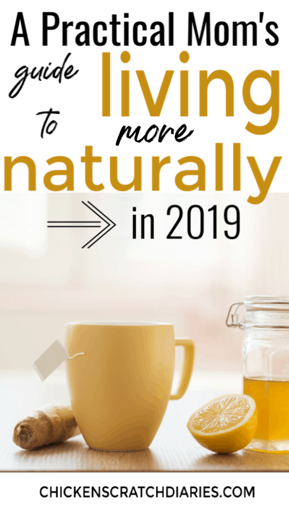 Image with text: a Practical Mom's Guide to living more naturally in 2019