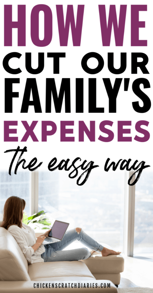 How to cut household expenses: image of woman shopping online
