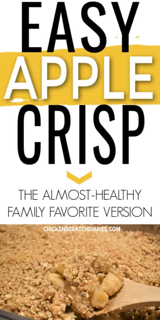 Easy almost healthy apple crisp recipe