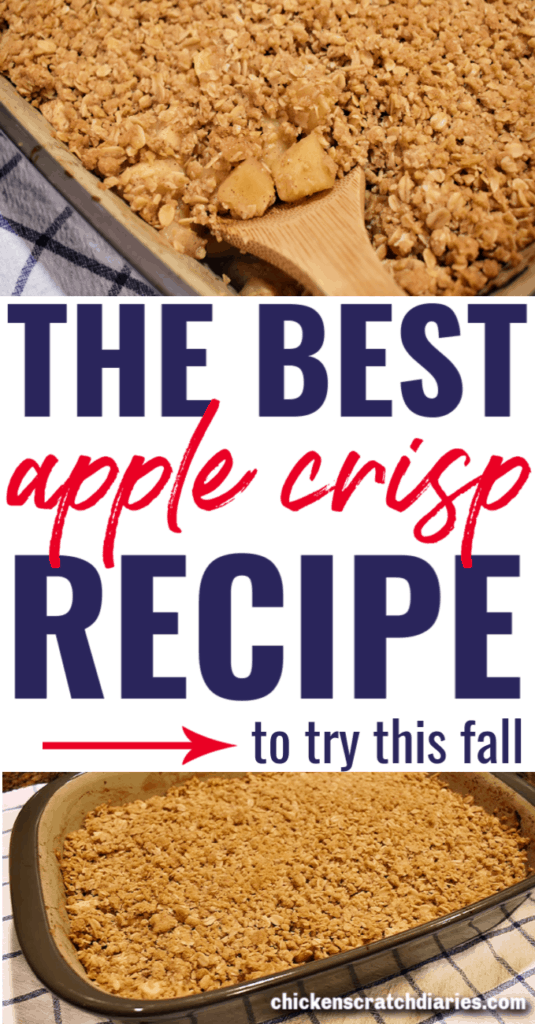 pin image for Apple crisp recipe