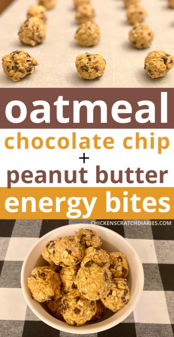 oatmeal chocolate chip energy balls for kids