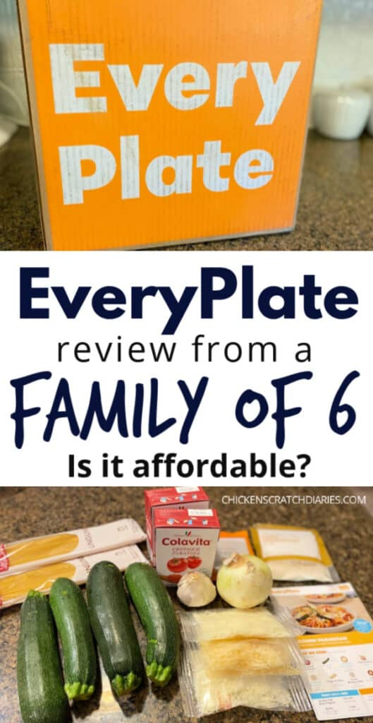 EveryPlate Review image