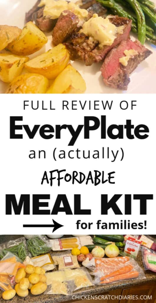 EveryPlate Review from a family of 6