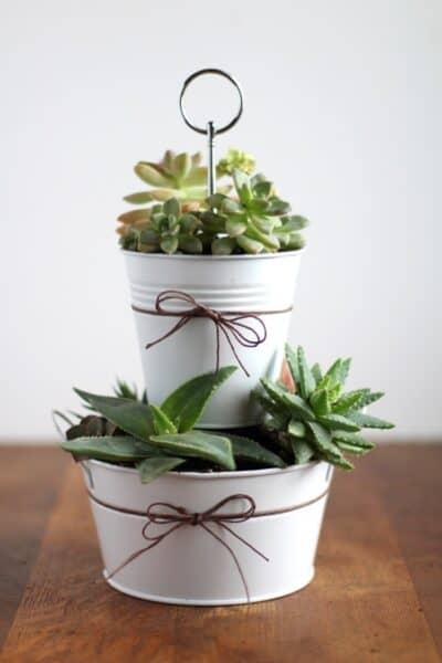 Easy succulent planter gift