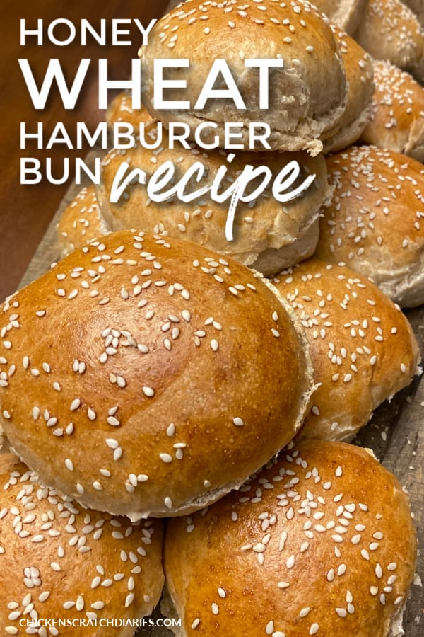 easy whole wheat hamburger buns