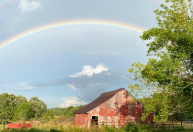 living rural-raising country kids-image
