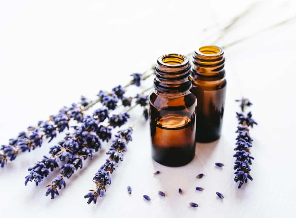 lavender oil-beginner oil