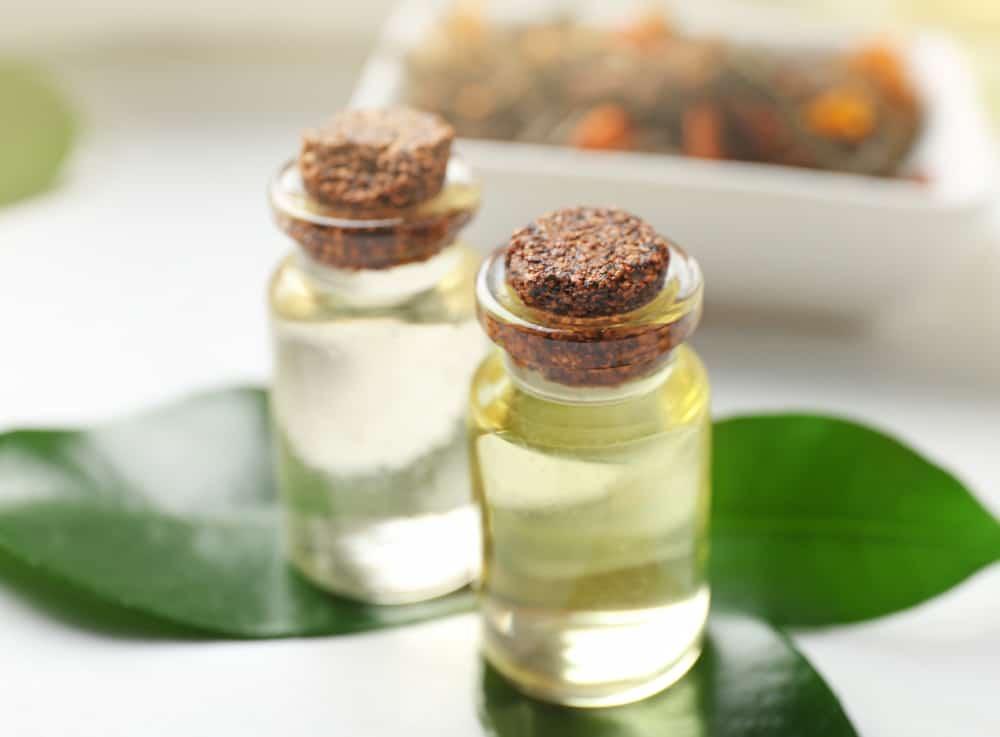 tea tree oil beginner essential oil