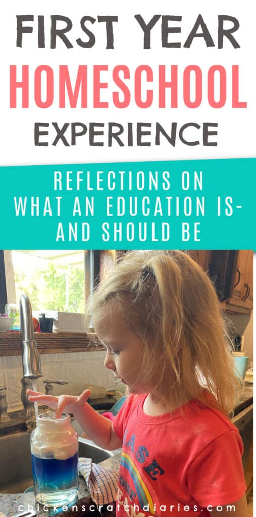 first year homeschool experience and reflections on education
