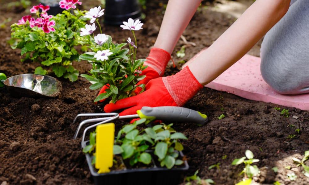 gardening hobby idea for moms